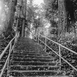 West Hills - Lewis and Clark Circle Stairway